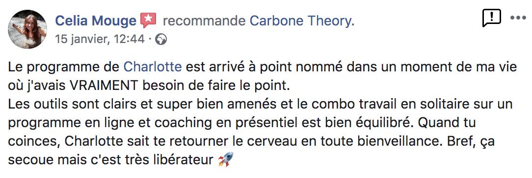 Avis formation confiance en soi Carbone Theory